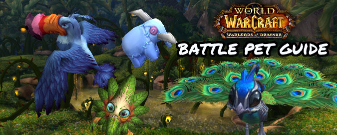 6451-warlords-of-draenor-battle-pet-guid