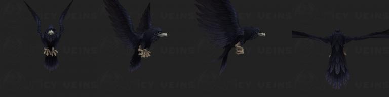 nightwing_raven.png